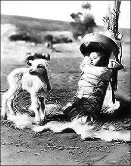 Navajo Cradleboard